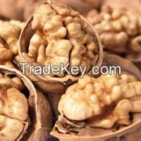 Walnut & Walnut Kernel for sale/New crop Wholesale Walnut kernel price