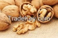 high quality raw walnuts with shell/without shell, Almond Nuts, Coffee Beans, Soybeans, Vanilla Beans, Apricot Kernels, Betel Nuts, Brazil Nuts, Chestnuts, Ginkgo Nuts, Hazelnuts, Macadamia Nuts, Bold Peanuts Blanch Peanuts Red skin peanuts&A