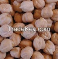 9mm Chickpeas with high quality, chickpeas for sale