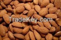 Fresh Almond/Raw Organic Almond Grade A Hot Sales
