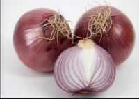 -3 Onions of 180Gr    -Cooking: these golden onions are perfect for forming the base of sauces, soups, stocks, stews, casseroles. You'd be hard pressed to cook without them; there should always be one or two around the kitchen. -Storage:in the fridge