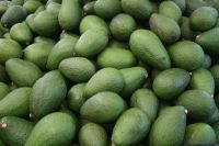 Avocados / peas for sale