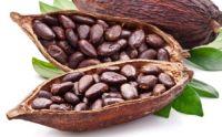 100% Cacao Powder