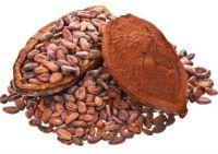 Wholesale Price Cacao