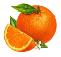 Fresh Citrus Fruits, Juicy Oranges, Navel, Valencia Oranges