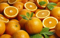 Buy Fresh Naval And Valencia Oranges