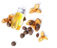 Factory Direct Supply Pure Refined Camellia Seed Oil For Sale