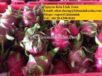 Fresh Dragon Fruit/Pitaya (White/Red Flesh)