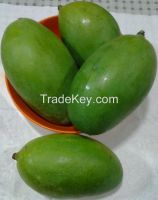 pakistani fresh mangoes