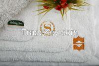 Hotel Towel and Bath Towel