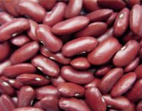 White And Red Kidney Beans