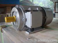 pressure washer motor