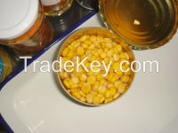 Sweet Corn for kitchen