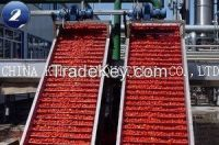 Tomato Paste 28-30 HB