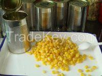 sweet corn best price
