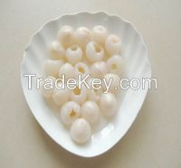 2015 crop canned lychee/litchi 2840g