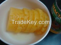 canned pineapple slices in good quality