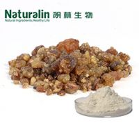 Frankincense Extract / Boswellia Extract