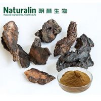 Rehmannia Extract