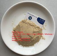 Cashew nut powder