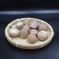 Good Quality Supari Betel Nut Areca Nut