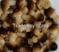 Canned straw mushroom brined