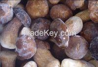 Frozen boletus edulis mushroom
