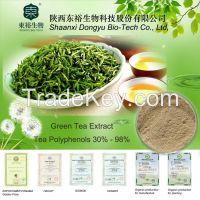 Green Tea Extract (Polyphenols)