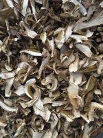 Dried King Bolete Porcini Mushroom