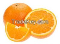 Navel Oranges and Valencia Oranges