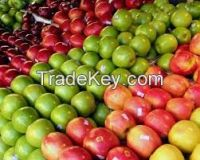Fresh Apples Class 1 From South Africa