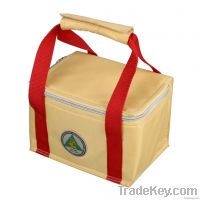 high quality colorful disposable cooler bag