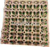 Plastic Egg Tray(30 Holes)