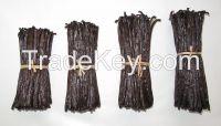 vanilla beans gourmet from Madagascar