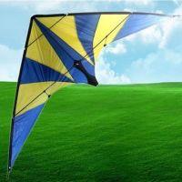 Hengda Dual Line Stunt Kite