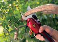 telescopic pruning scissors
