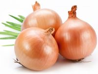 High Quality Onions from Sindh