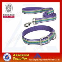 hot sale buckles for dog collar in china market