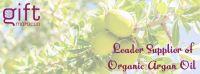 Bulk Organic Argan Oil from Morocco - ECOCERT, USDA, ONSSA, ISO9001