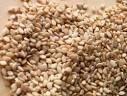 Sesame Seed | Sunflower Seed | Moringa Seeds | Poppy Seeds