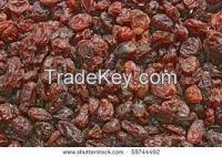 Thompson dried seedless raisins
