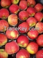 FRESH FARM PREMIUM GRANNY SMITH APPLES