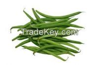 Wholesale food specification frozen green beans