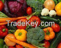 IQF Frozen vegetables with FDA,HALAL,BRC,HACCP