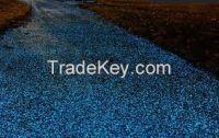 Luminous Road Mark Paint