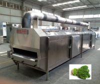 instant freezer, liquid nitrogen refrigerator for curry leaf