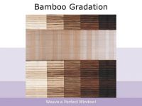 Bamboo Gradation
