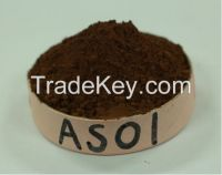 Supply Alkalized Cocoa Powder(Cacao Polvo) 10/12 AS01 for Purchasing