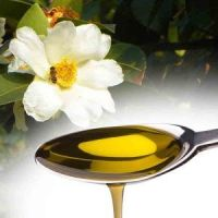 oragnic camellia cooking oil