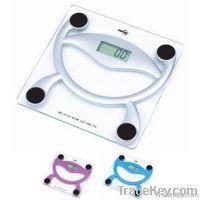 Portable Health Scale